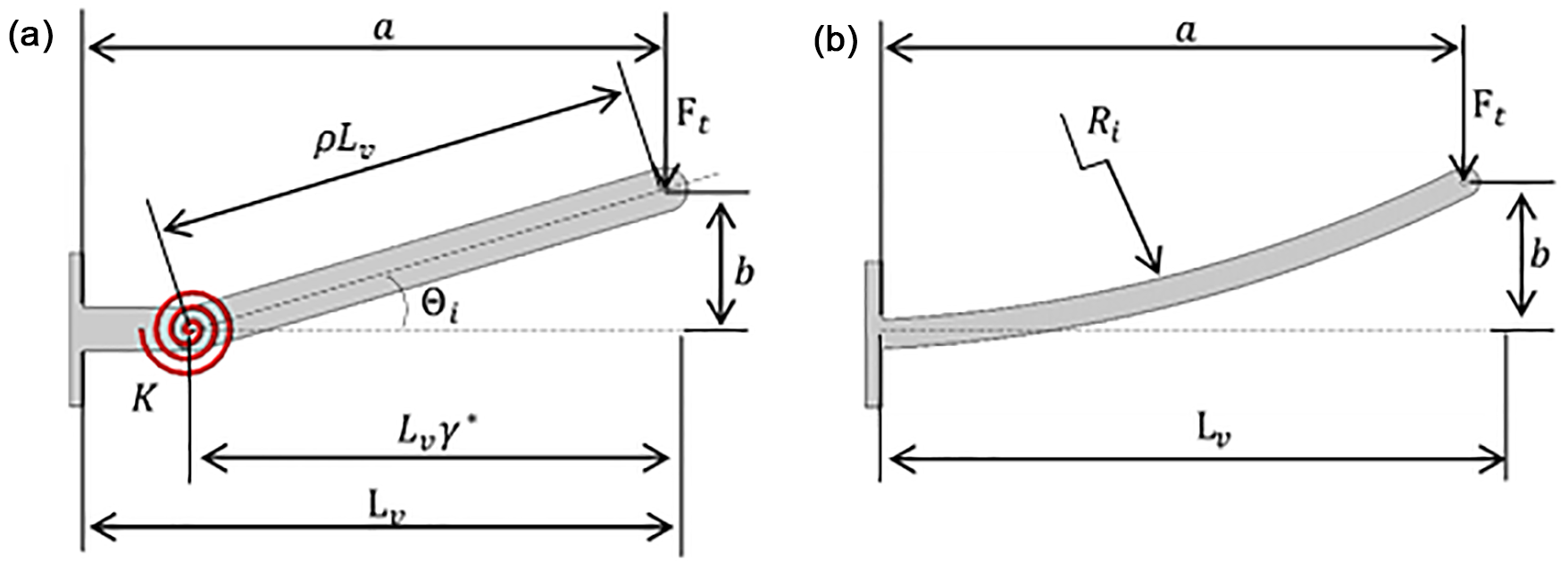 View Of The Draw Shear And Moment Diagrams For Cantilever Beam
